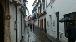 El Torcal,CORDOBA,Montilla,Priego de Cordoba