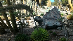 Dino Park_4